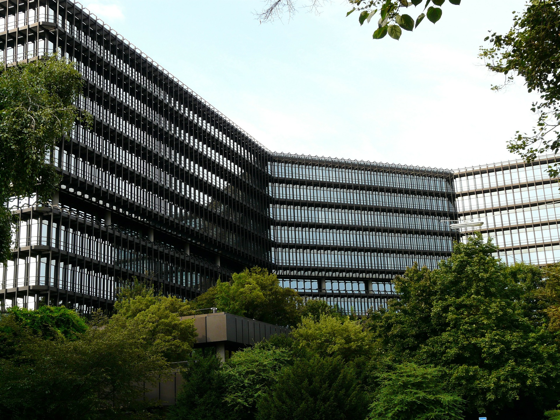 UK and European Patent Basics